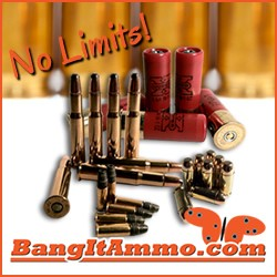 BangItAmmo.com, Greenville, SC